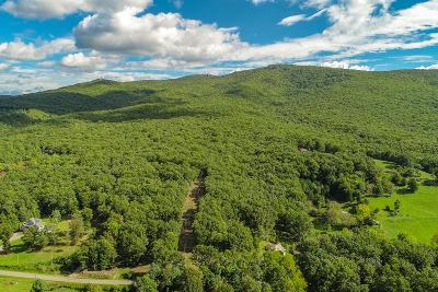 Wytheville Residential Lots & Land For Sale: 744 Barrett Mill Rd