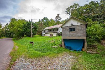 Wytheville Single Family Home For Sale: 744 Barrett Mill Rd
