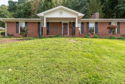 Saltville Single Family Home For Sale: 226 Wiley Drive