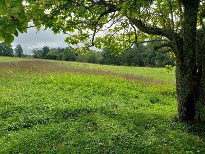 Carroll County, Grayson County Residential Lots & Land For Sale: 813 Porterfield Rd
