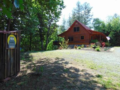 Mouth Of Wilson Single Family Home For Sale: 191 Racing River Road