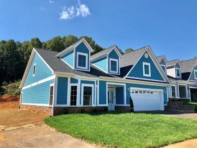 Bristol VA Single Family Home For Sale: $268,850