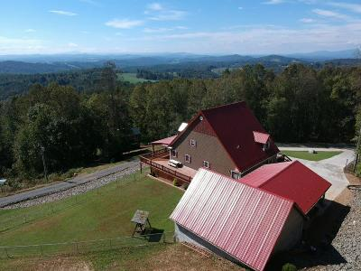 Carroll County, Grayson County Single Family Home For Sale: 139 Pine Mountain Drive