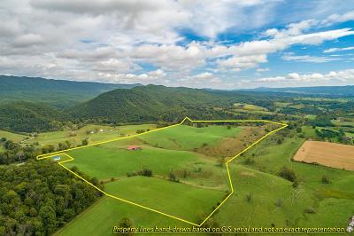 Wytheville Residential Lots & Land For Sale: 98 Acres Mudlick Rd