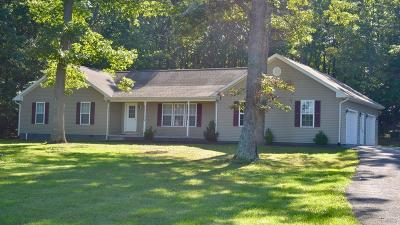 Wythe County Single Family Home For Sale: 648 Barrett Mill Road