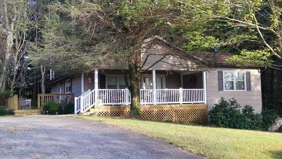 Carroll County, Grayson County Single Family Home For Sale: 175 Chateau Ln