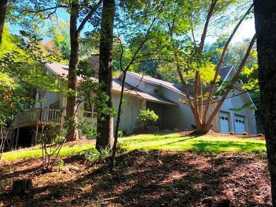 Carroll County Single Family Home For Sale: 773 Raintree Road