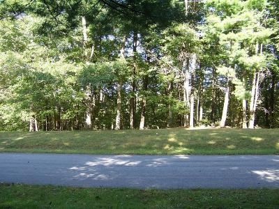 Hillsville VA Residential Lots & Land For Sale: $19,500