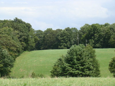 Carroll County, Grayson County Residential Lots & Land For Sale: Tbd Chances Creek Road