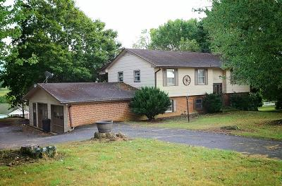 Wytheville Single Family Home For Sale: 1675 W Main St