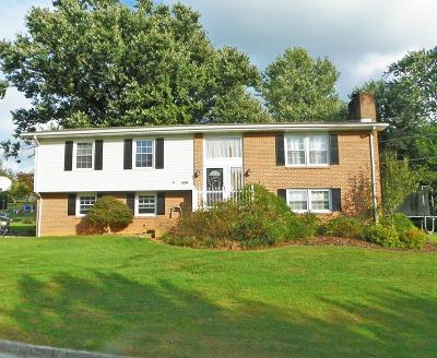 Abingdon Single Family Home For Sale: 426 Brookhill Dr