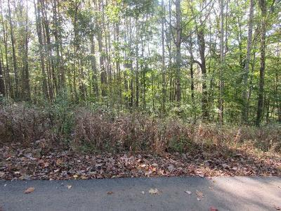 Carroll County, Grayson County Residential Lots & Land For Sale: Tbd Lot 9 Kanawha Ridge Rd