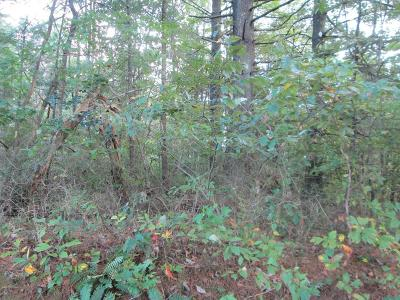 Carroll County, Grayson County Residential Lots & Land For Sale: Tbd Ben Ridge Rd