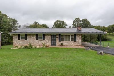 Bristol Single Family Home For Sale: 2306 King Mill Pike