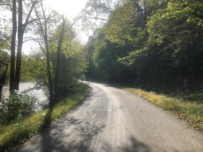 Saltville Residential Lots & Land For Sale: Tbd North Fork River Rd