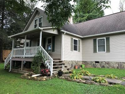 Carroll County Single Family Home For Sale: 66 Old Galax Pike