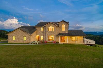 Grayson County Single Family Home For Sale: 365 High Point Ln