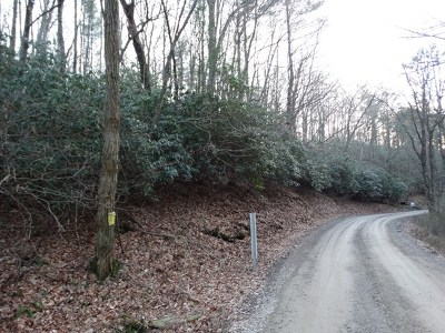 Carroll County, Grayson County Residential Lots & Land For Sale: Tbd Millstone Road