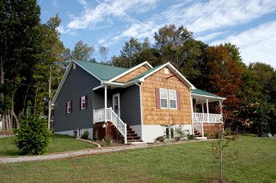 Wythe County Single Family Home For Sale: 238 Felts Lane