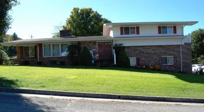 Wytheville Single Family Home For Sale: 815 12th Street