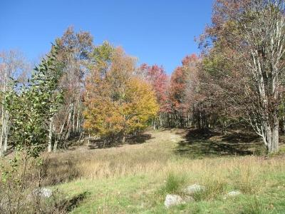 Carroll County, Grayson County Residential Lots & Land For Sale: Tbd Sugar Camp Lane