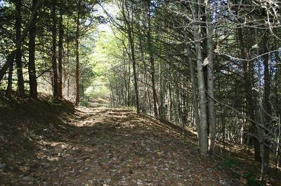 Rural Retreat Residential Lots & Land For Sale: Tbd A Frame Drive