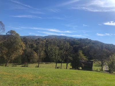Abingdon Residential Lots & Land For Sale: Tbd Campbell Hollow Rd