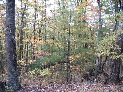 Carroll County, Grayson County Residential Lots & Land For Sale: Tbd Stoots Mountain Road