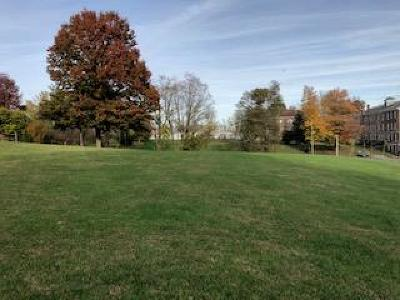 Abingdon Residential Lots & Land For Sale: Tba Court Street