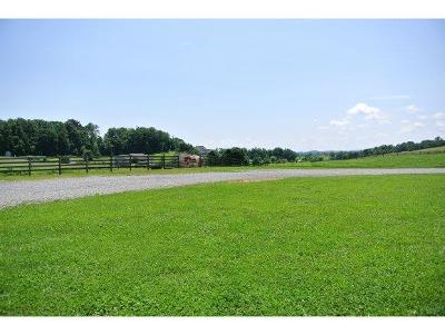 Glade Spring Residential Lots & Land For Sale: Tbd Mont Heritage