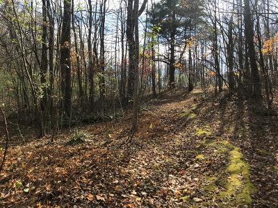 Hillsville VA Residential Lots & Land For Sale: $120,000