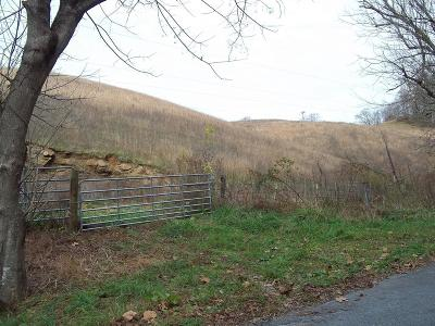 Meadowview Residential Lots & Land For Sale: 8369 Blackwell Chapel Rd