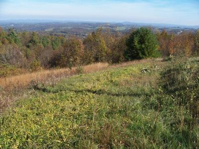 Carroll County Residential Lots & Land For Sale: Tbd Beamers Knob Road