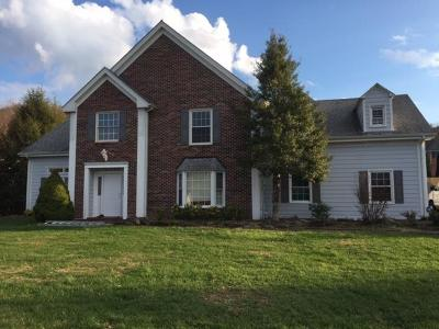 Abingdon Single Family Home For Sale: 21164 Vances Mill Road