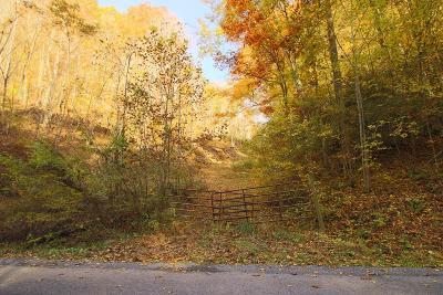 Abingdon Residential Lots & Land For Sale: Tbd Garrett Creek Rd