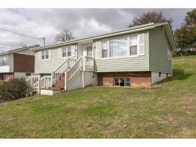 Bristol VA Single Family Home Active Contingency: $99,900