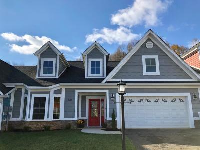 Bristol VA Condo/Townhouse For Sale: $288,850