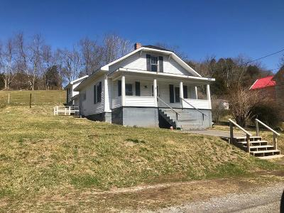 Wythe County Single Family Home For Sale: 532 Painters Hill Road