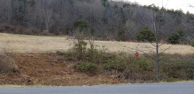 Max Meadows Residential Lots & Land For Sale: Tbd Hwy 52