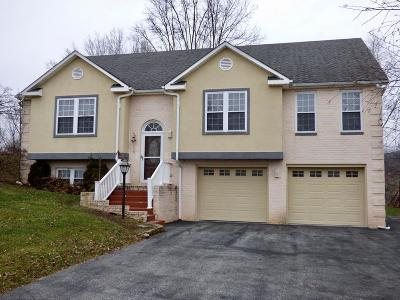 Wytheville Single Family Home For Sale: 850 Wytheview Drive