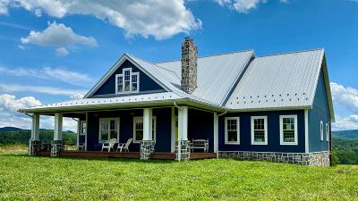 Wythe County Single Family Home For Sale: 2895 Wysor Highway
