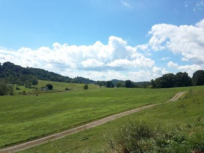 Abingdon Residential Lots & Land For Sale: Tbd Wallace Pike
