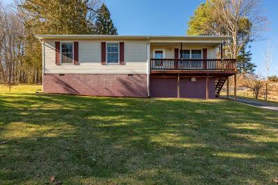 Abingdon VA Single Family Home For Sale: $114,900