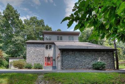 Bristol VA Single Family Home For Sale: $229,000