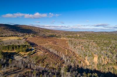 Carroll County Residential Lots & Land For Sale: 96 Acres Scratch Gravel Road
