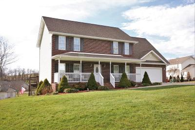 Glade Spring Single Family Home For Sale: 32469 Spring Hill Dr.