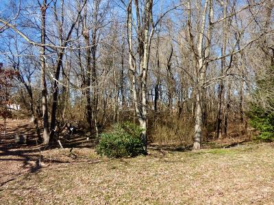 Rural Retreat Residential Lots & Land For Sale: Tbd Off Rt. 675 & Jefferson Street