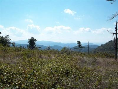 Grayson County Residential Lots & Land For Sale: Tbd Windy Ridge Trail