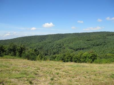 Grayson County Residential Lots & Land For Sale: Tbd Lost Lake Road