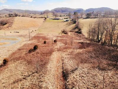 Meadowview Residential Lots & Land For Sale: Tbd Shortsville Road